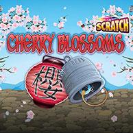 Cherry Blossoms Scratch