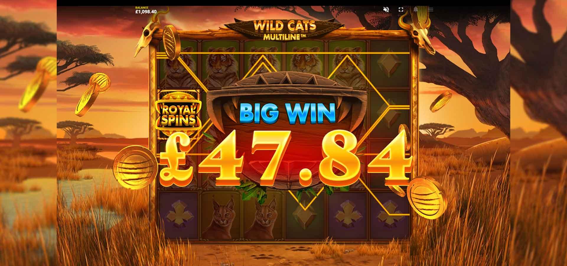 Wild Cats - Must Drop Jackpots